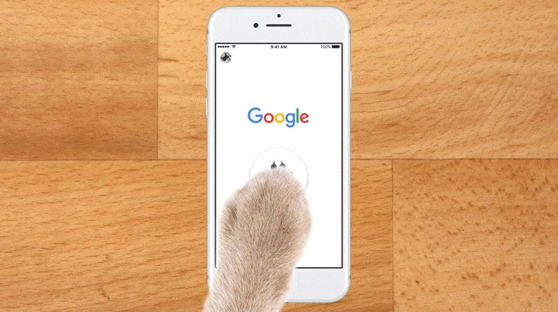 googlenowcat - 2017 愚人節 Google 推出的 10 項惡搞服務