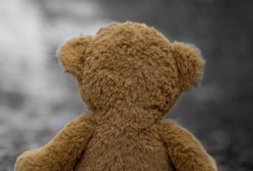bear 370x250 - [詞曲創作] 牡丹花的故事:一首送給樹人老師的歌