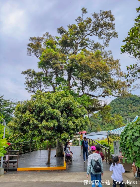 baishihu 37 - 台北內湖|碧山巖步道、白石湖吊橋、同心池、夫妻樹