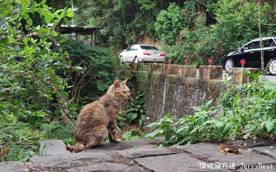 baishihu 41 - 台北內湖|碧山巖步道、白石湖吊橋、同心池、夫妻樹